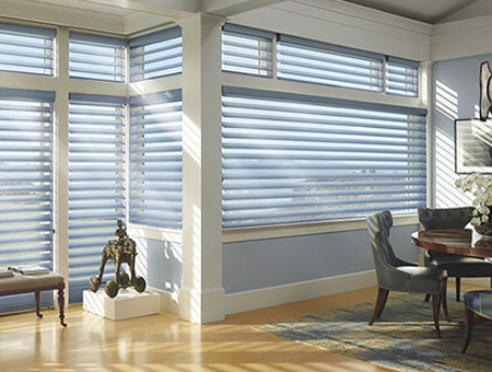 Dual System Blinds